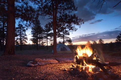 Camp Fire at Dawn